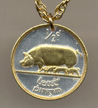 Irish Pig Coin Necklace